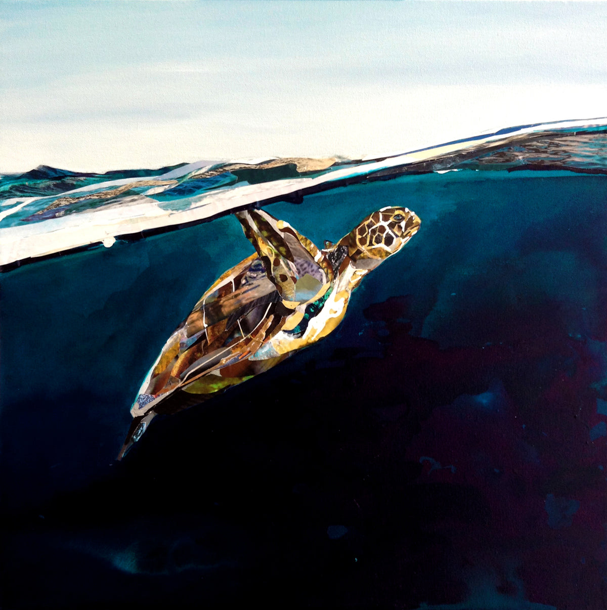 collage-art-piece-turtle-Sarah-Jackson