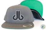db hat -Gray and Black Flat Bill