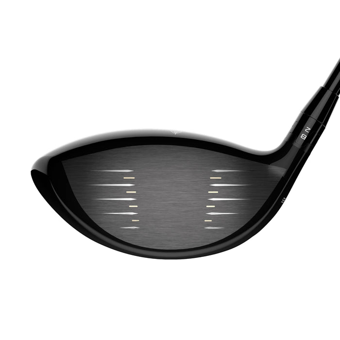 Titleist TS3 Driver Face Image on Howard's Golf