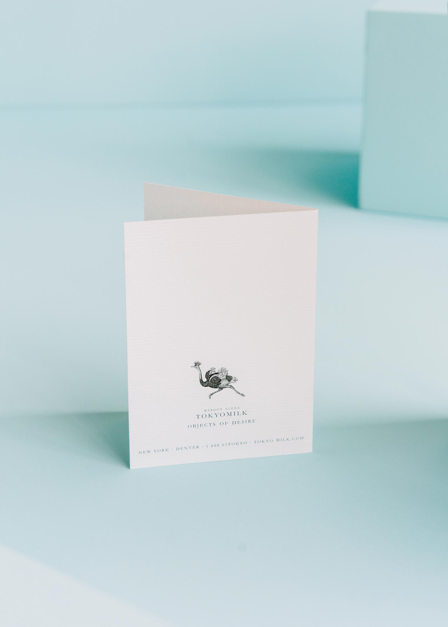 Bat Crazy Without You Greeting Card