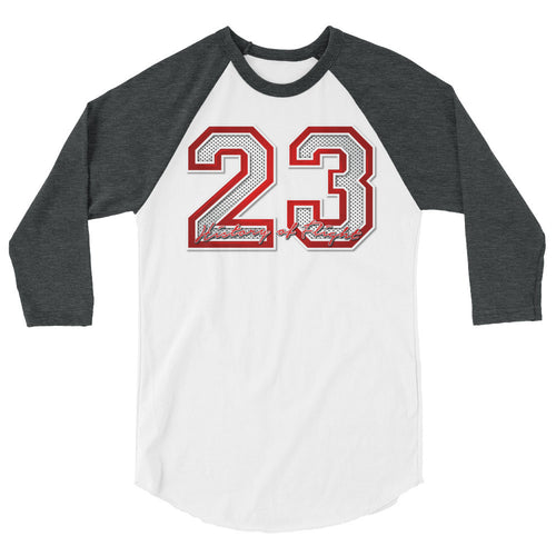 23 Graphic Baseball T Shirt To Match Retro Air Jordan 13 History of Flight Shoe
