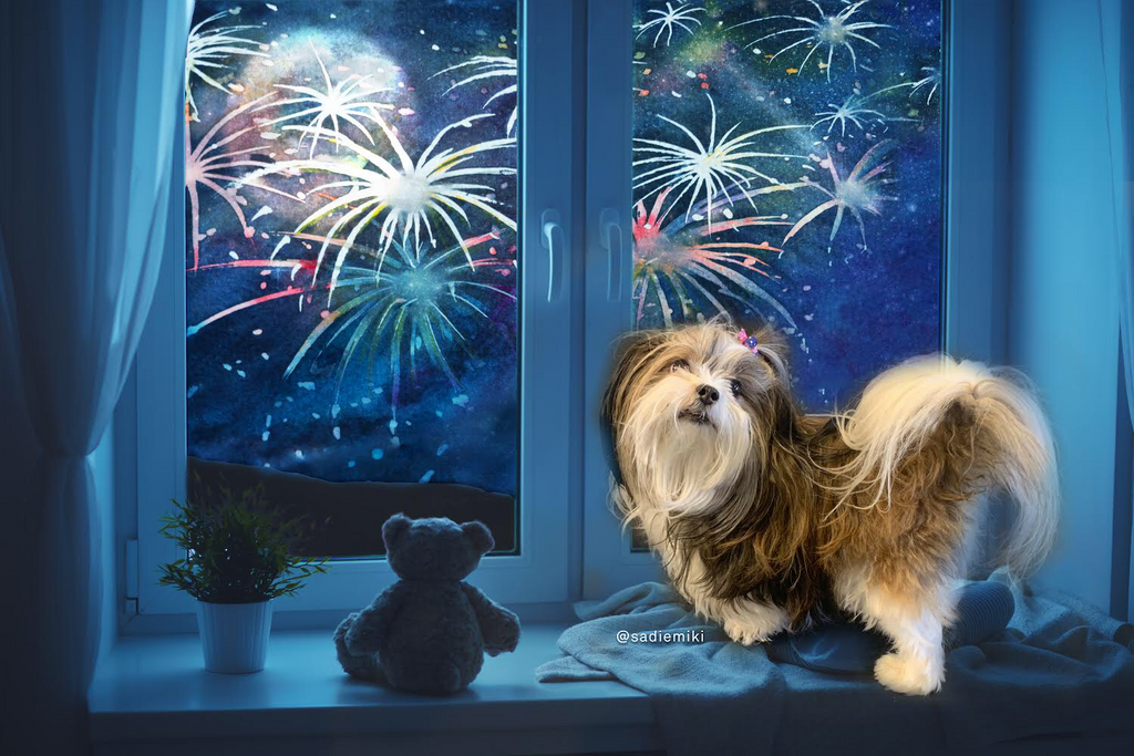 10 Recommendations to Celebrate New Year's Safely with Your Pets