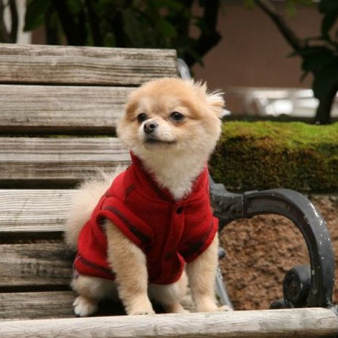 Honey Comb Thermal Fleece Jacket Red model
