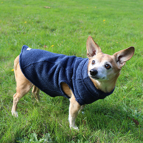 Pullover Calming Fleece Sweater For All Size Pups - Stone Blue