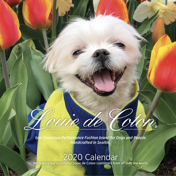 2020 Standard Wall Calendar with US and Canada Dates & Support Rescue Groups