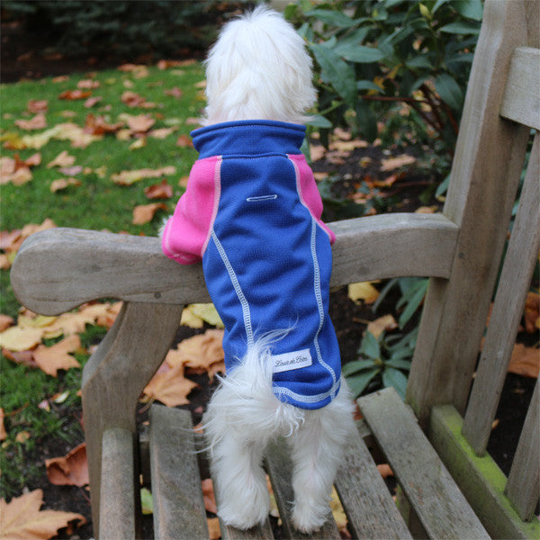 full length reflective outwear small dogs blue pet standing