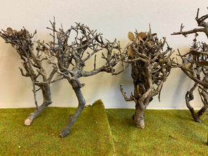 Natural Tree Frames 10-15cm