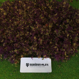 Purple Woodland Mixed Fine Leaf Foliage Scatter