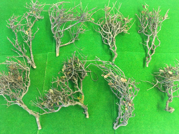 Natural Tree Frames 16-20cm