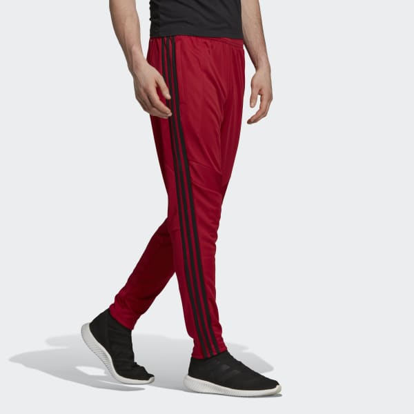 Adidas Tiro 19 Training 'Active Maroon' Pants
