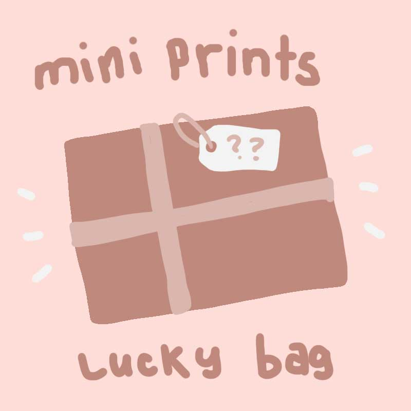 mini print lucky bag