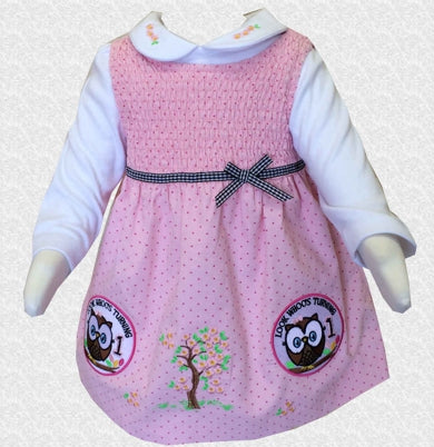 12 Months Owl theme Look Who is Turning 1 Pink 1st birthday Dress