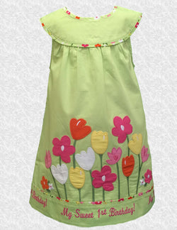 18 MO Light Green 1st birthday embroidered Gymboree baby Dress
