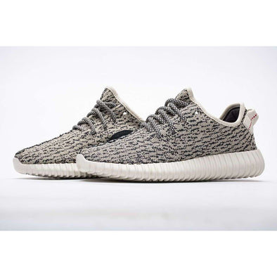 AQ4832 adidas Yeezy Boost 350 Turtle Dove Basf Boost Fashion Basketball Shoes High Top Sports Sneakers Athletic Leisure Running Schuhe Zapatos scarpe chaussures Casual BNWT