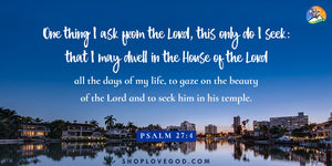Lord, I Seek You