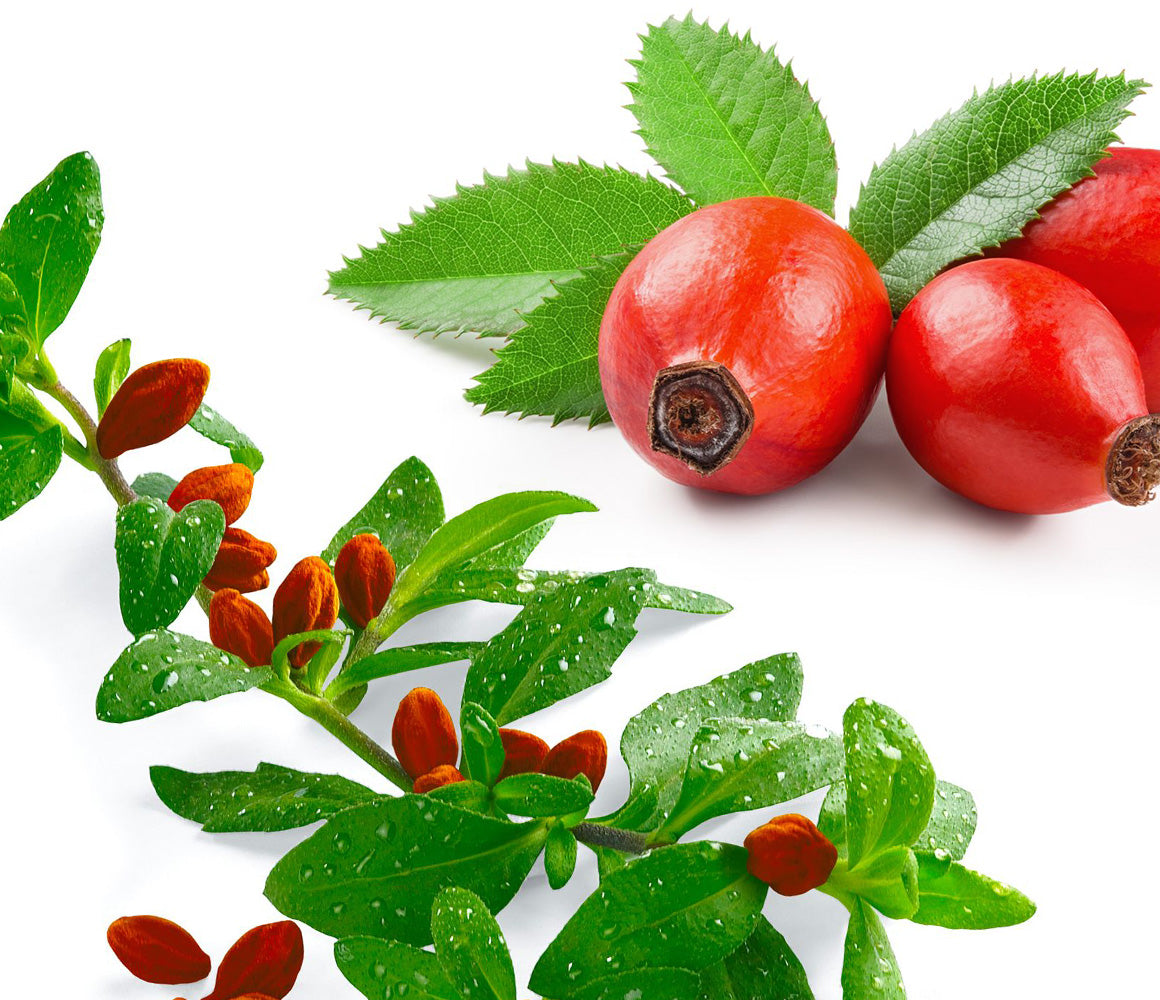 Rosehips