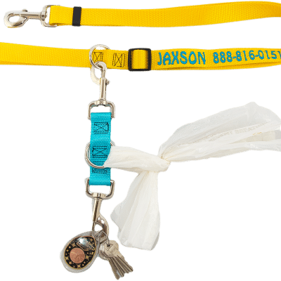 Dog Leash Accessory Strap