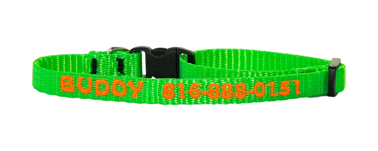 three eighths inch personalized dog collar