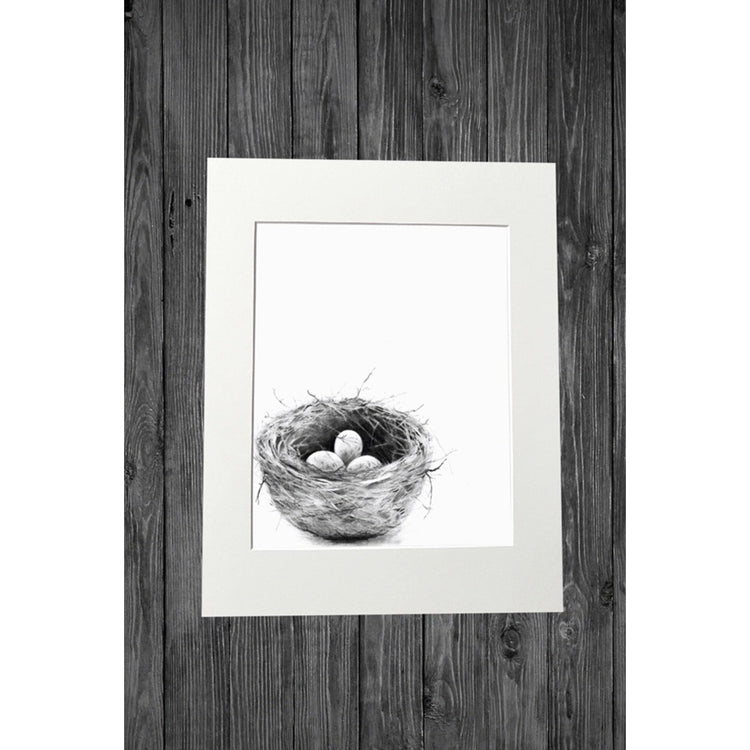 Nest Print from Original Pencil Drawing - Cathy Hamilton Artworks