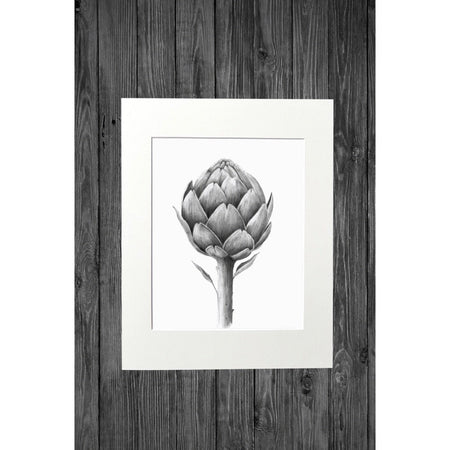 Artichoke Print from Original Pencil Drawing - Cathy Hamilton Artworks