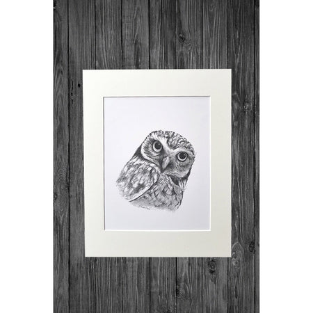 Owl Print from Original Pencil Drawing - Cathy Hamilton Artworks