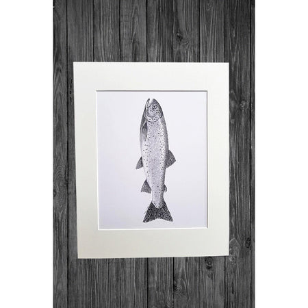 Trout Print from Original Pencil Drawing - Cathy Hamilton Artworks