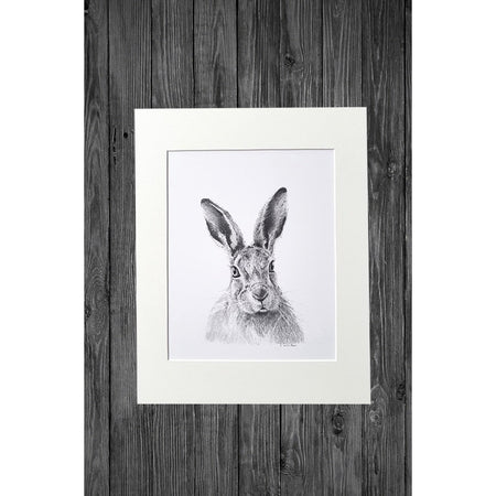 Hare Print from Original Pencil Drawing - Cathy Hamilton Artworks