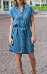 Daisy Button Up Tencil Dress Dresses - IV Collection