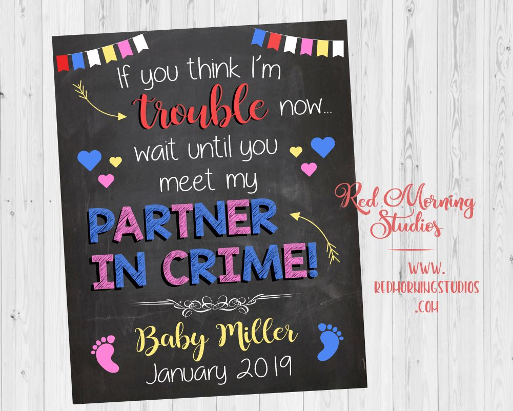 Sibling Pregnancy Announcement Sign. Big Brother pregnancy reveal sign. Partner in Crime poster. New baby brother or sister photo shoot