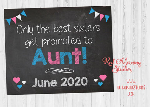 Aunt New Baby Announcement sign. Aunt Pregnancy announcement card. Aunt Pregnancy Reveal. photo prop best sisters get promoted