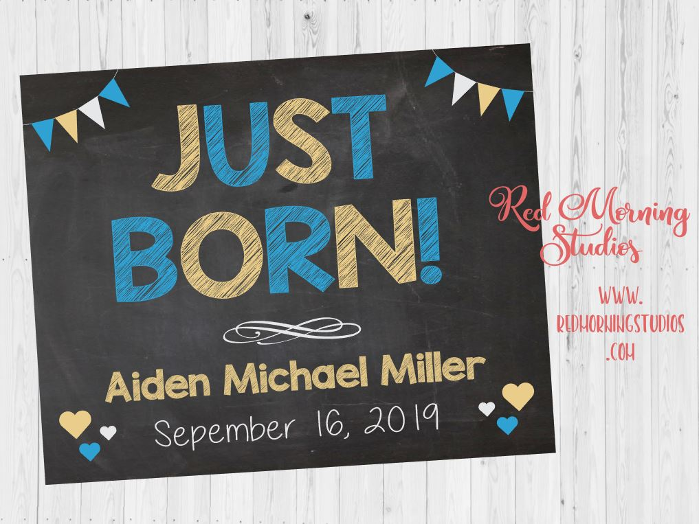 Newborn photography photo prop sign. New Baby photo sign. new baby boy photo session. Just Born announcement sign.