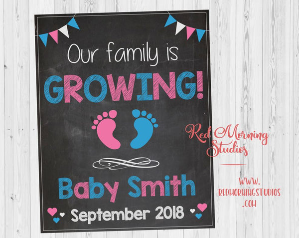 Pregnancy Announcement Sign. Pregnancy Reveal Sign. New Baby Announcement poster. Social Media Pregnancy reveal. Maternity photo shoot prop