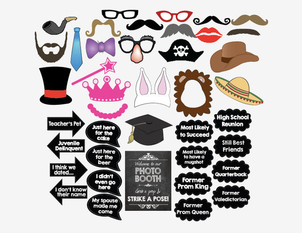 Class Reunion PRINTABLE photo booth props High School Reunion photobooth party