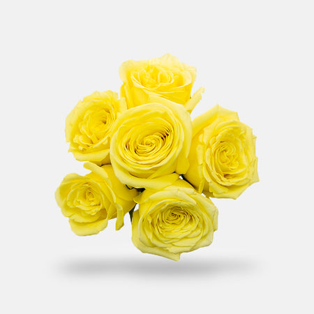 1 Half Dozen Rose Bouquet - Yellow