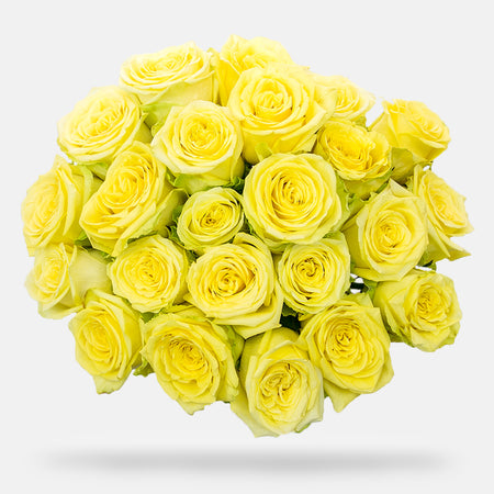 2 Dozen Rose Bouquet - Yellow