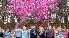 Pink Gender Reveal Confetti Cannon - Twist to Reveal!