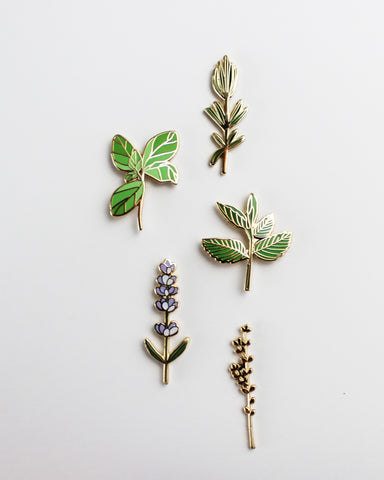 Culinary Herbs Pin Pack