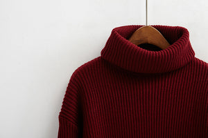 Solid Knitted Turtleneck