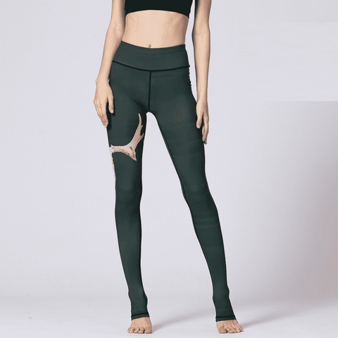 Image of Seamless Tight Leggings Yoga Pants