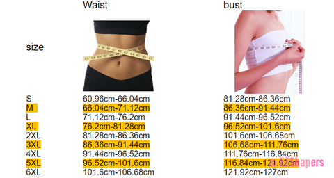 Image of Waist Trainer Corset with Hook-and-Eye & Zipper Closure