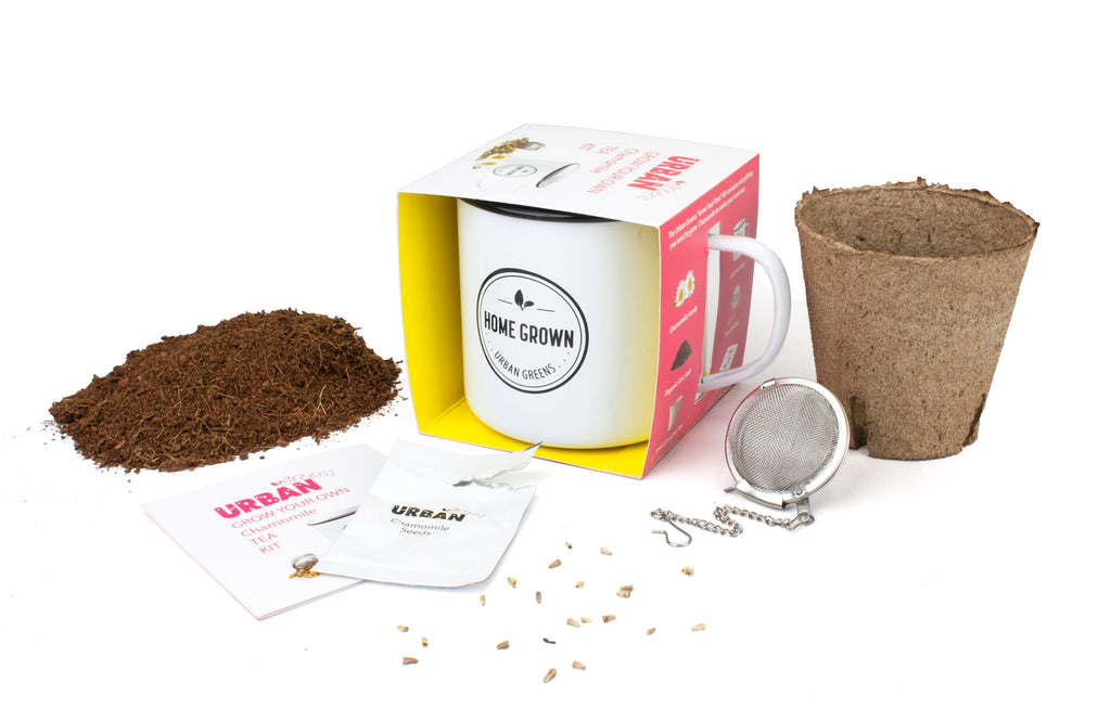 Urban Greens Chamomile Grow Your Own Tea Kit