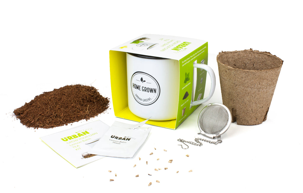 Urban Greens Lemon Balm Grow Your Own Tea Kit