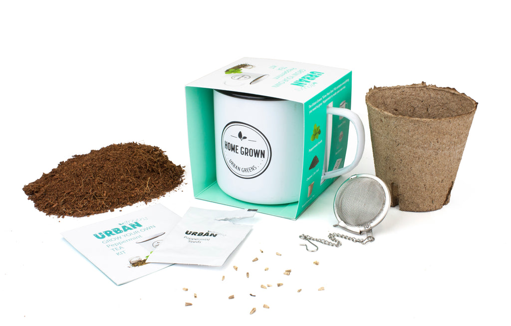 Urban Greens Peppermint Grow Your Own Tea Kit