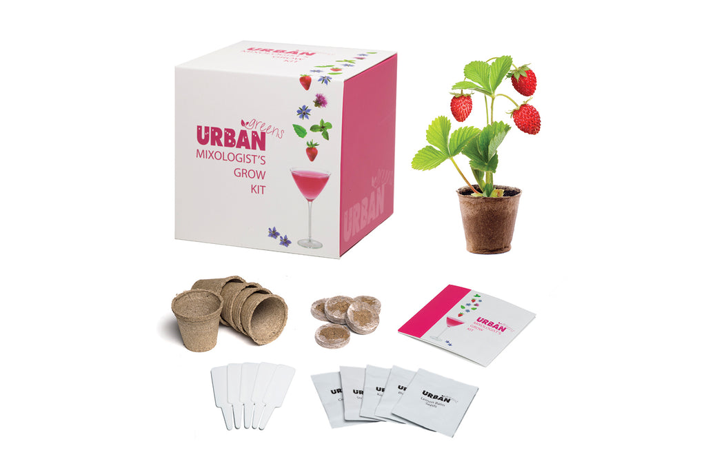 Urban Greens Grow Your own garnish garden kit