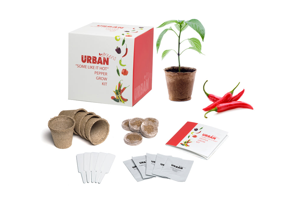 Urban Greens Grow Your Own Pepper Garden Kit