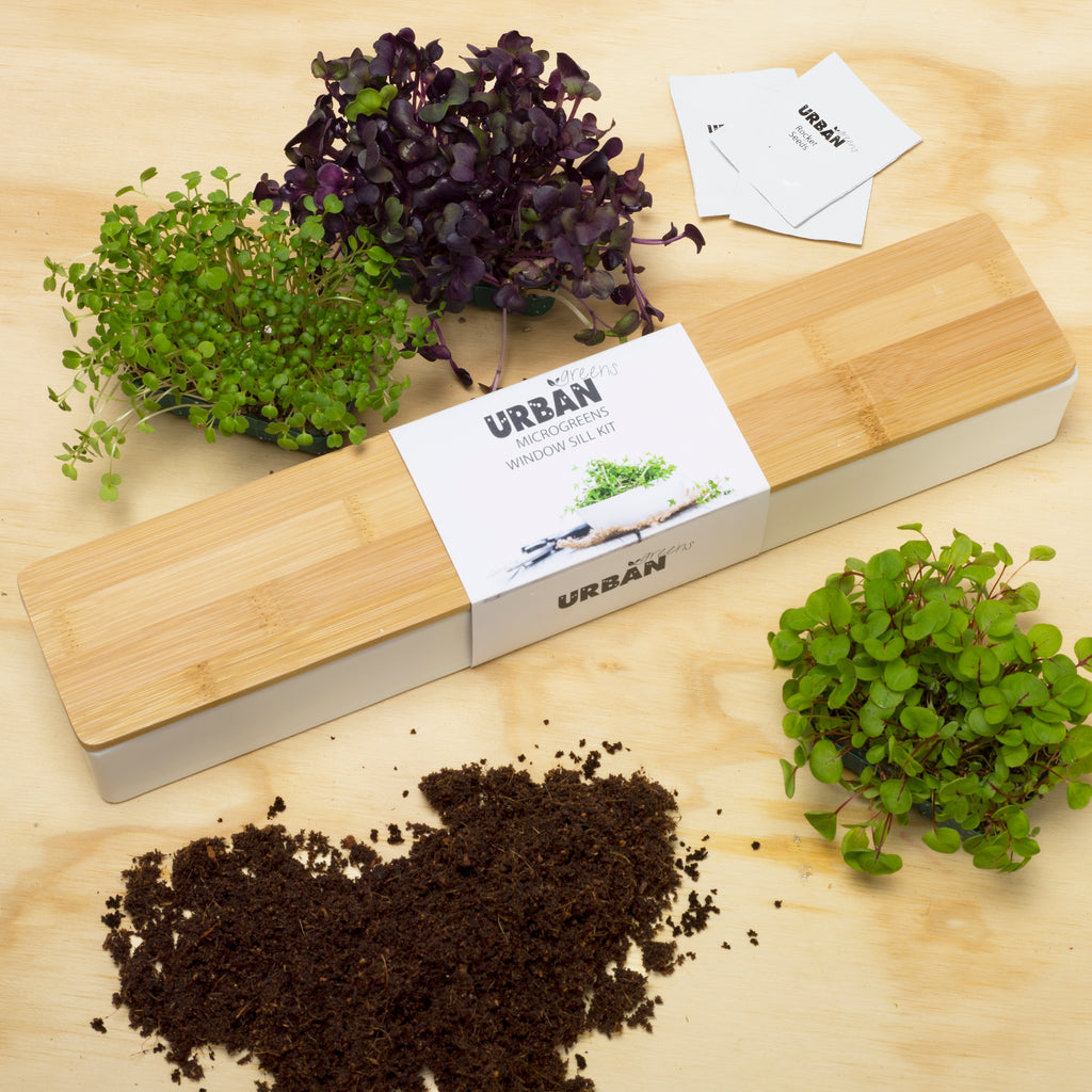Urban Greens Micro Greens Windowsill Grow Kit