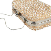 Mini Pearl Box Clutch Champagne