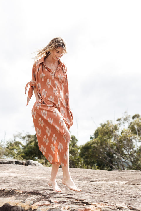 Motion Dress - Rose Ikat