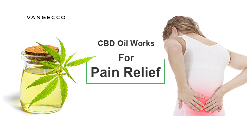 Does CBD Oil Help With Relief Pain?