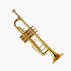 Trumpet Small